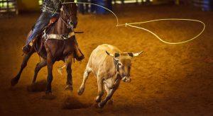 Coming Up: Kodiak State Rodeo